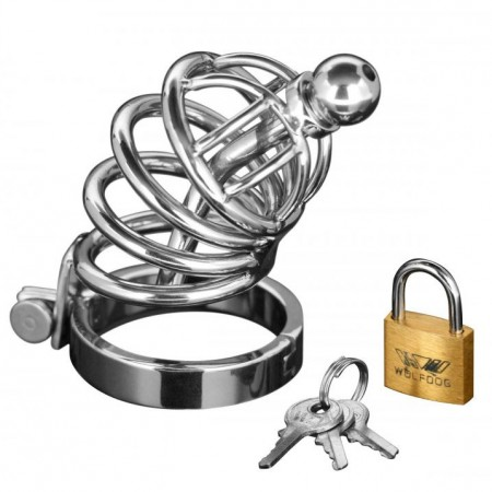 Asylum 4 Ring Locking Chastity Cage